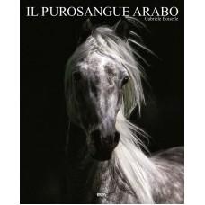 IL PUROSANGUE ARABO (I/GB/E/P)