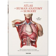 BOURGERY. ATLAS OF HUMAN ANATOMY AND SURGERY (IEP)