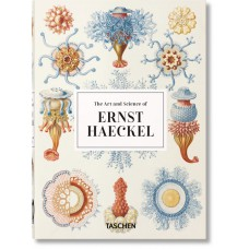 ERNST HAECKEL (GB) - 40