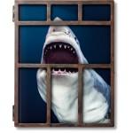 MICHAEL MULLER. SHARKS - edizione limitata